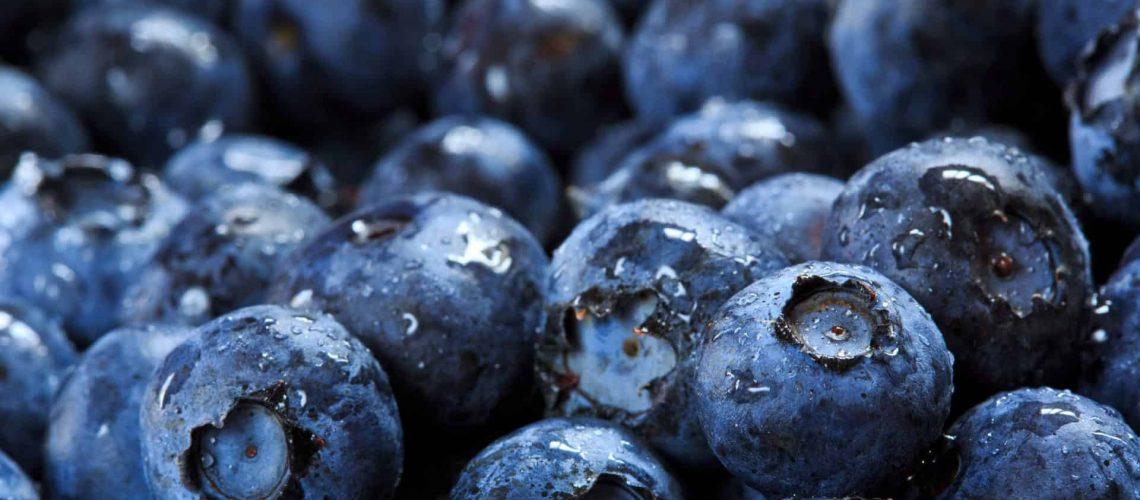 Blueberries_shutterstock_146861537_RGB 300dpi copy